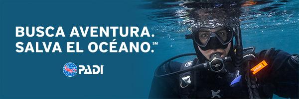 Curso Padi open water online España Madrid